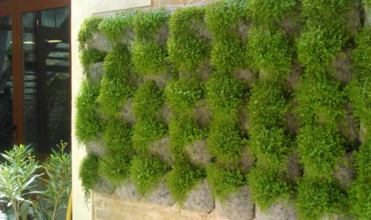 jardines verticales para decorar