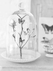 campana de vidrio decoración